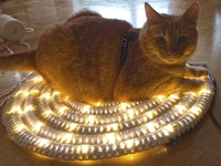 BautaWitch Crocheted LED Light Rug